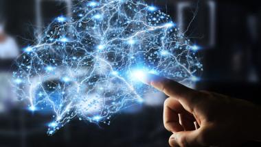 Кая Нурденген: Мит е,  че ползваме само 10% от мозъка си