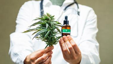 И Хипократ е лекувал с марихуана