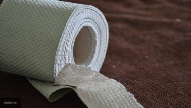 Учените посочиха смъртните опасности от използването на тоалетна хартия