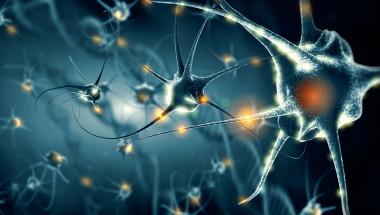 Блокирането на ключов протеин може да лекува хронична болка