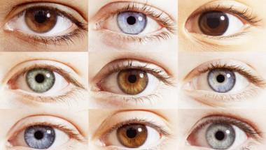 10 факти за човешкото око, които не са широко известни