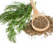 Семената от копър са отлично лекарство против безсъние