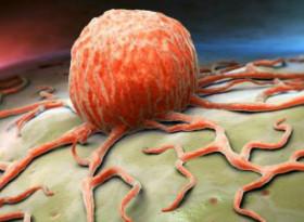 9-те най-мощни хранителни вещества, които могат да убият раковите клетки