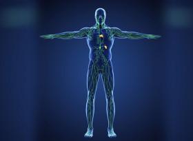 Суперефективни упражнения за раздвижване на лимфата