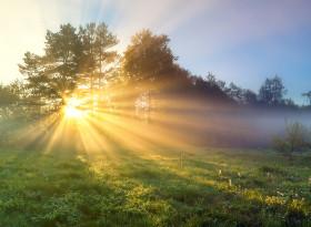 Може ли слънчевата светлина да се бори с метаболитния синдром?