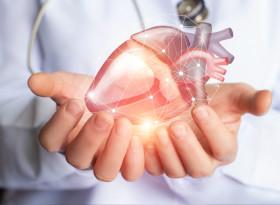 """Д-р Светослав Гогов: Инфарктът може бъде """"маскиран"""""""