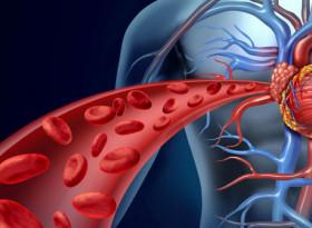 Д-р Мясников обясни как да понижим кръвното без лекарства