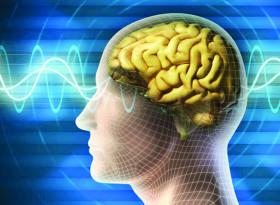 Росица Велкова: Тета лечението  работи директно  с подсъзнанието