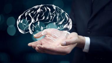 12 метода за предпазване на мозъка