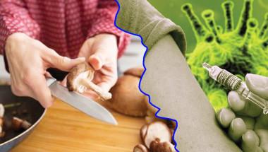 Гъбите - спасение за диабетиците