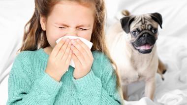 Д-р Симеон Узунов: Полени и домашни любимци предизвикват алергична астма