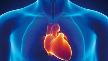 Професор по кардиология: Как да разпознаем първите симптоми на инфаркт