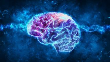 Бъркате думи - проверете мозъка си