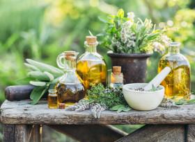 Петте най-полезни билки през лятото