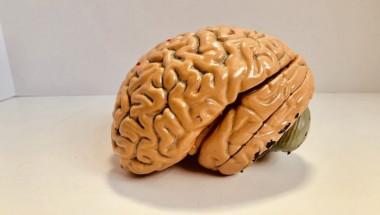 Нов тест може да открие болестта на Алцхаймер 20 години преди появата на симптомите