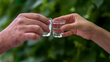 В малки дози алкохолът е полезен при атеросклероза?