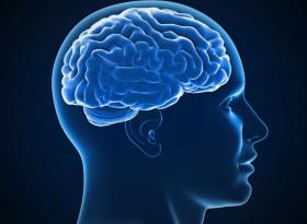 5 природни рецепти за прочистване на кръвоносните съдове на мозъка