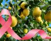 """""""Маслото на дълголетието"""" намалява риска от рак на гърдата"""