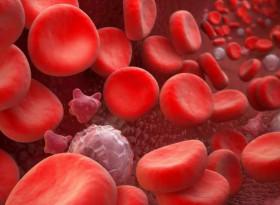 Кръвната група - ключ към смъртоносните заболявания