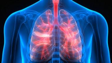 Как да проверим здравето на белите дробове и да ги подготвим за зимата