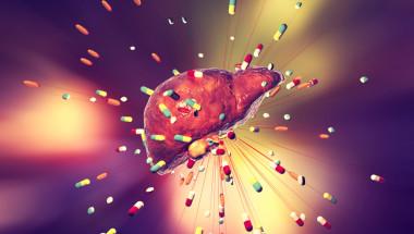 Правилно ли е при хепатоза да не се предписват лекарства?