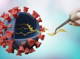 Кои са продуктите, които убиват 97% от коронавируса