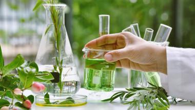Ангел Ангелов: Растителни екстракти възстановяват тялото
