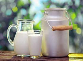 Колко полезно е пастьоризираното мляко?