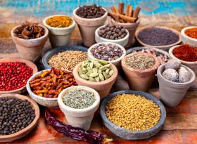 Д-р Пратикша Прабхудесай: При вирусна инфекция не яжте два дни