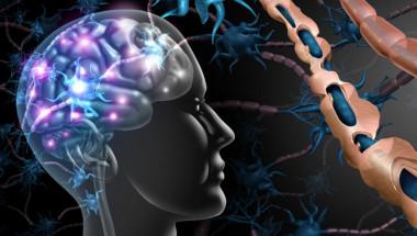 Проф. Алексей Бойко, д.м.н.: Лечението на множествената склероза в ранен стадий я държи под контрол