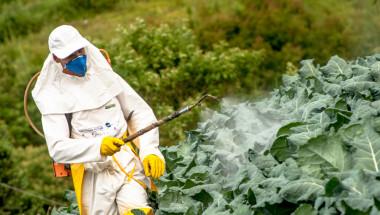 Пестицидите в храните повишават риска от рак на гърдата