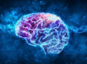 Властта уврежда мозъка