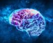 Възстановяването след инсулт зависи от засегнатите центрове в мозъка