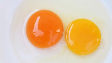 Ръководство за яйца: какъв цвят трябва да е жълтъкът?