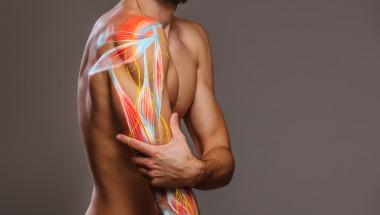 Тромбът може да се усеща като разтегнат мускул