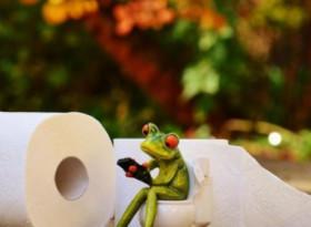 Защо и как тоалетната хартия е опасна за здравето