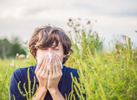 Кои продукти влошават симптомите на сенната хрема?