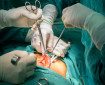 Доц. д-р Пламен Иванов: Апандиситът е голямата болест на корема