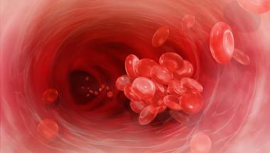 Рибата намалява риска от образуване на кръвни съсиреци