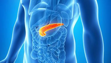 Какво да направим, за да си опазим панкреаса