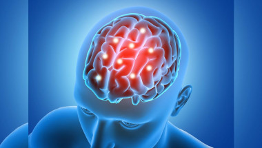 Д-р Владимир Шишков: Без холестерола няма как да се изградят мозъчните клетки